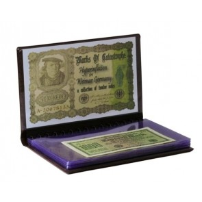 Hyperinflation in Weimar Germany, A Collection of Twelve Notes